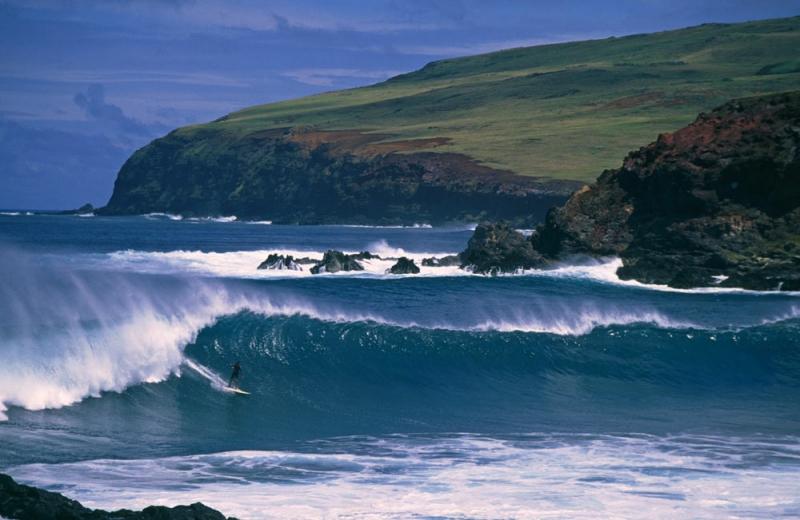 Скальные берега