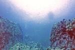 Океанская прозрачность