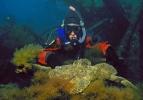 Рыба Белопятнистый бычок керчак
