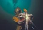 Трехболтовый водолаз и осьминог